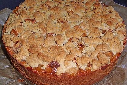 Apfelkuchen mit Vanillecreme und Streusel 5