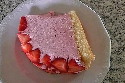 Erdbeer - Kuppeltorte à la Jessy 28