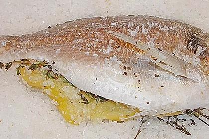 Wolfsbarsch mit Lavendel, in der Salzkruste 2