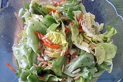 Gemischter Salat mit Pinienkernen und Honig - Senf - Dressing 2