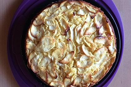 Schweizer Apfelkuchen 41