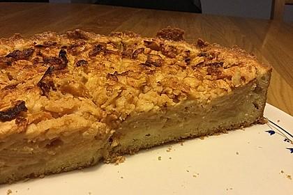 Schweizer Apfelkuchen 29