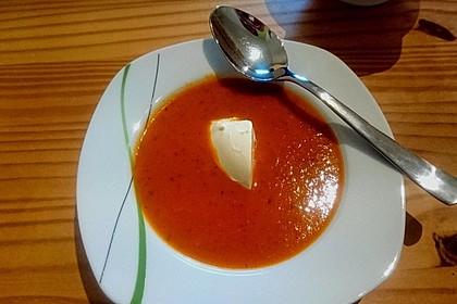 Frische Tomatensuppe 26