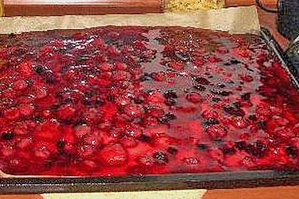 Kirsch - Himbeer - Heidelbeer - Schmand Blechkuchen 5