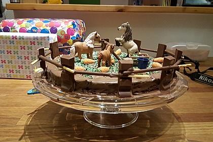 Der perfekte  Schokoladenkuchen 3