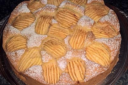 Apfelkuchen - sehr fein (Bild)