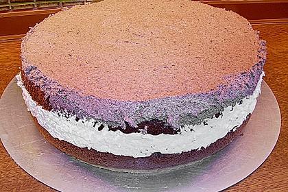 Kirsch - Schokosahne - Torte Schwarzwälder Art 9