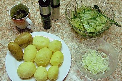 Kartoffelsalat mit Dörrfleisch und Gurke 16
