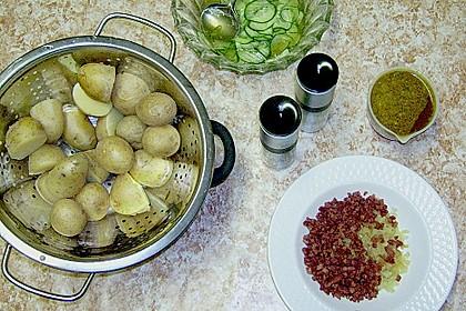Kartoffelsalat mit Dörrfleisch und Gurke 14