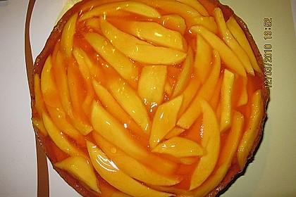 Mango - Torte 1