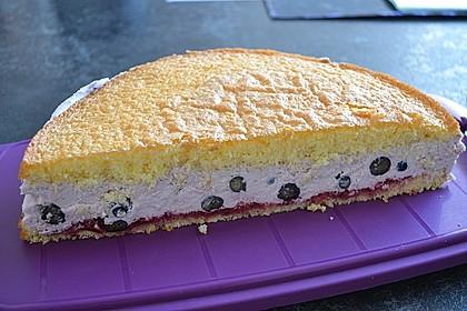 Heidelbeer -Joghurt -Topfen Torte 2