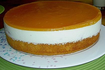 Aprikosen - Joghurt - Torte 14