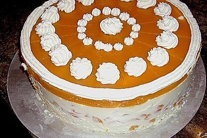 Aprikosen - Joghurt - Torte 7