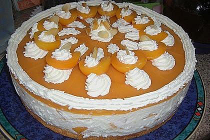 Aprikosen - Joghurt - Torte 9