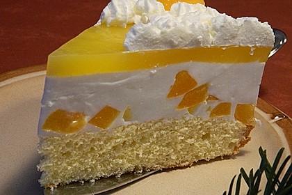Aprikosen - Joghurt - Torte 4