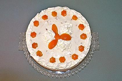 Aprikosen - Joghurt - Torte 15