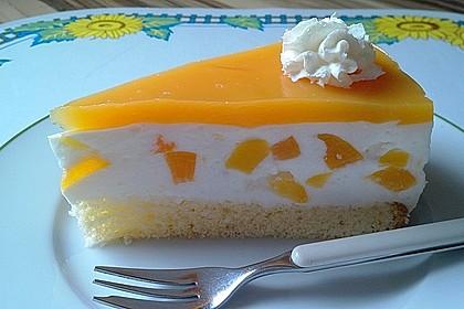 Aprikosen - Joghurt - Torte 1