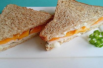 Truthahn Sandwich - Exotic