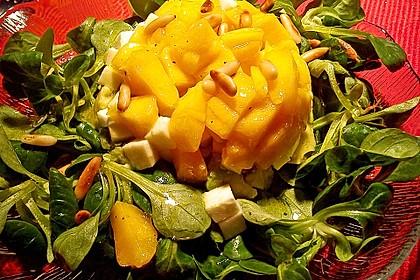 Avocado-Mozzarella-Salat mit Mango 45