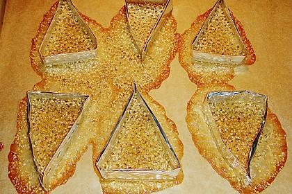 Sesam - Krokant - Hippen oder Körbchen 21