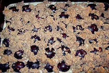 Pflaumenkuchen mit Zimt - Mandel - Streuseln 6