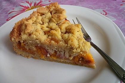 Burgis Nektarinen - Streuselkuchen 1