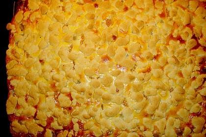 Stachelbeer - Mandarinen - Kuchen