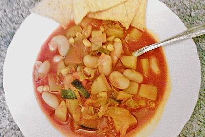 Mexikanische Gemüsesuppe mit Tortillachips 2
