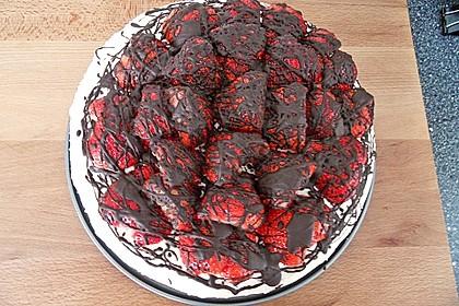 Erdbeer - Frischkäse - Torte 27