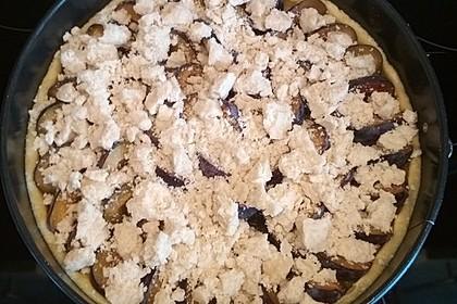 Bayerischer Zwetschgenkuchen mit Streuseln 7