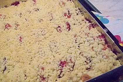 Zwetschgenkuchen 4 - schichtig 24