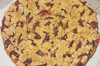 Zwetschgenkuchen 4 - schichtig (Bild)