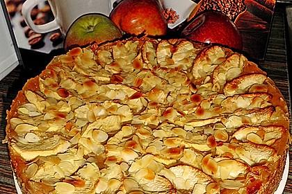 Fruchtiger Apfelkuchen 17