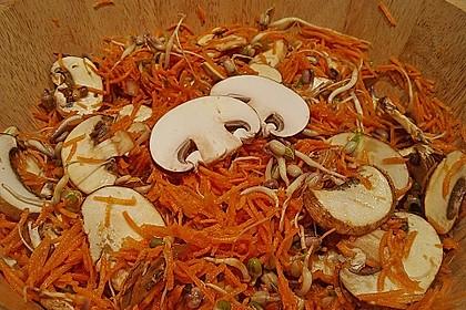 Sprossen - Möhren - Salat