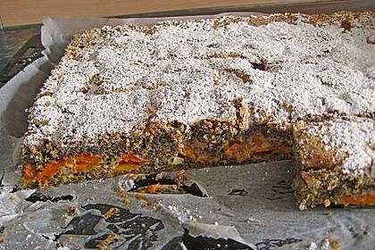 Marillenkuchen mit Mohn 2
