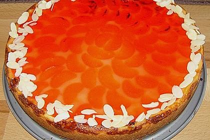 Mandarinen - Schmand - Kuchen 8