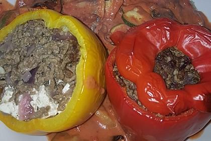 Gefüllte Paprika mit Hackfleisch, Feta und Zucchini