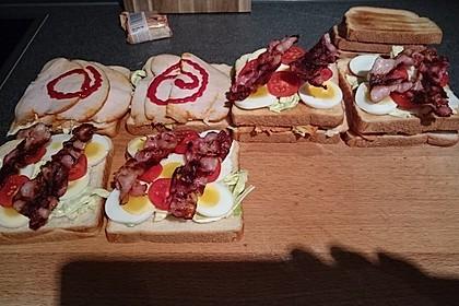 New York Club Sandwich 35