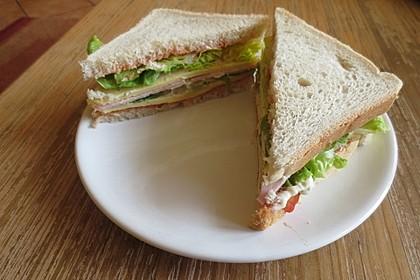 New York Club Sandwich 16