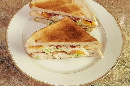 New York Club Sandwich 47
