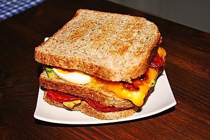 New York Club Sandwich 30