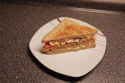 New York Club Sandwich 22