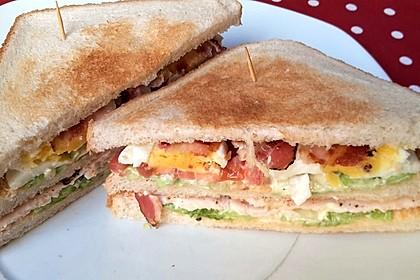 New York Club Sandwich 19