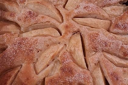 Super leichter Apfelkuchen 28