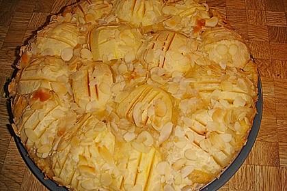 Super leichter Apfelkuchen 43