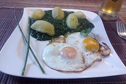 Spinat, Spiegelei und Salzkartoffeln 25
