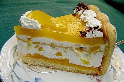 Pfirsich - Joghurt - Torte 13
