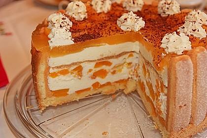 Pfirsich - Joghurt - Torte 17