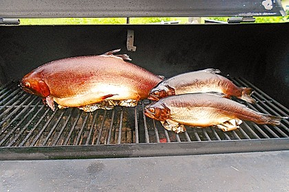 Fisch heiß räuchern 2