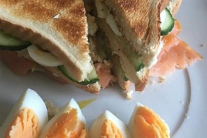 Frühlings-Sandwich (Bild)